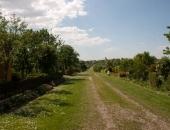 Aleja główna - dalsza część Ogrodu